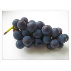Гидролат Винограда, натуральная цветочная вода - тоник для лица, 150 мл.